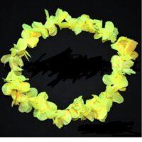 הוואי צהוב זוהר